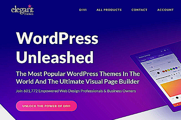 What Are the Major Characteristics of Divi and Extra Elegant Themes?